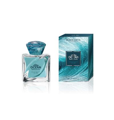 Pacogi Black Onyx Ocean Breeze For Men 100 Ml - Perfumy Męskie